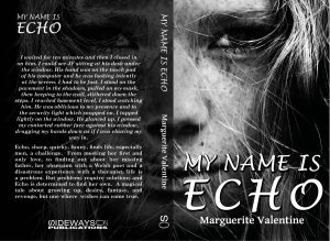 My Name Is Echo Covers